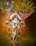 Giraffes Framed Prints - Above It All Framed Print by Carol Cavalaris