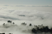White Tapestries - Textiles Posters - Above the Clouds Poster by Ellen Kallas