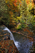 Autumn Photographs Prints - Above the Falls Print by Phill  Doherty