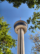 Tower Of The Americas Photos - Above the trees by Arthur Herold Jr