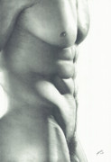 Nudes Drawing Drawings - Abs-olutely by Maciel Cantelmo