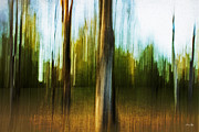 Canon 7d Prints - Abstract 1 Print by Scott Pellegrin