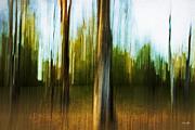 Abstract 1 Print by Scott Pellegrin