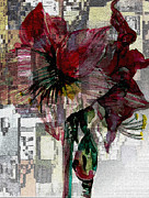 Flower Design Prints - Abstract Amaryliss Print by Mindy Newman