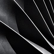 Abstract Art - #abstract #bw #bnw by Ritchie Garrod