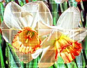Abstract Daffodils  Print by Cathie Tyler