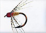 Fly Fishing Drawings Originals - Abstract Fly by James Eugene  Moore