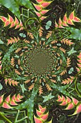 Hyper Posters - Abstract Ginger Flower Poster by Lawrence Lindstrand