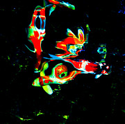 Rar Prints - Abstract Koi Print by Chua  ChinLeng