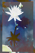 Natures Flower Garden Mixed Media Posters - Abstract Lily 2 Poster by Debra     Vatalaro