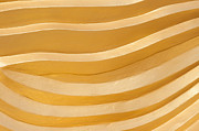Gild Posters - Abstract lines Poster by Stefano Baldini