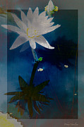 Natures Flower Garden Mixed Media Posters - Abstract Lotus 1 Poster by Debra     Vatalaro