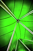 Tent Acrylic Prints - Abstract Of Green Acrylic Print by Meirion Matthias