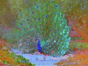 Abstract Digital Art  - Abstract Peacock by Natalya Shvetsky