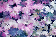 Leaf Abstract Prints - Abstract Purple Maple Leaves Print by Jennie Marie Schell