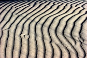 Arie Arik Chen Framed Prints - Abstract Sand 5 Framed Print by Arie Arik Chen