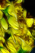 Cindy Boyd - Abstract Yellow Daffodil Bouquet