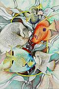 Angelfish Posters - Abundant on the reef Poster by Liduine Bekman