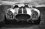 Historic Vehicle Prints - AC Cobra 427 Print by Sebastian Musial