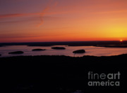 Bay Islands Photo Prints - Acadia National Park - Maine USA Print by Erin Paul Donovan