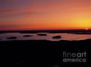 Acadia National Park - Maine Usa Print by Erin Paul Donovan