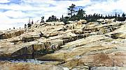 National Parks Paintings - Acadia-Schoodic Point by Terry  OMaley