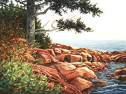 Ledge Painting Posters - Acadia Tree Poster by Elaine Farmer