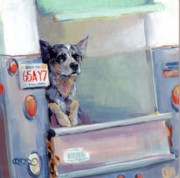Cattle Dog Art - ACD Delivery Boy by Kimberly Santini