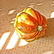 Acorn Digital Art - Acorn Squash by Bonnie Bruno