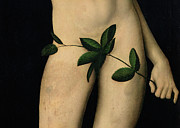 Adam And Eve Posters - Adam Poster by The Elder Lucas Cranach