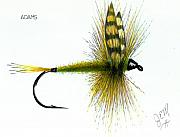 Fly Fishing Drawings Originals - Adams by James Eugene  Moore
