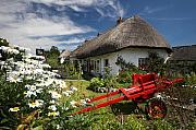 Adare Acrylic Prints - Adare thatch roof cottages Ireland Acrylic Print by Pierre Leclerc