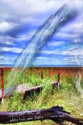 Adding Fresh Water Shortly Print by Cathy  Beharriell