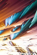 Adenosine Photos - Adenosine Crystals, Light Micrograph by David Parker