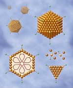 Polygon Posters - Adenovirus Structure, Artwork Poster by Art For Science