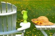 Weekend Prints - Adirondack chair on the grass  Print by Sandra Cunningham