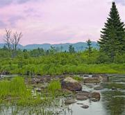 """adirondack Park""  Photo Posters - Adirondack high peaks from marshy area New York Poster by Brendan Reals"