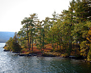 Fir Trees Photos - Adirondack Island on Lake George by David Patterson