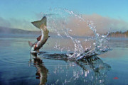 Trout Art - Adirondack Life by Brian Pelkey