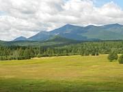 Stella Sherman - Adirondack Mountains