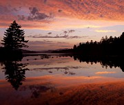 Adirondacks Photo Posters - Adirondack Reflections 2 Poster by Joshua House