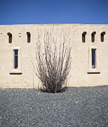 Workplace Framed Prints - Adobe Building and Ocotillo Cactus Framed Print by Paul Edmondson