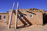 Pueblo Architecture Posters - Adobe Houses And  A Ladder Casting Poster by Ira Block