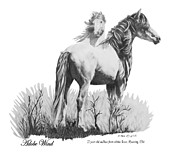 Wild Horses Drawings Framed Prints - Adobe Wind Framed Print by Marianne NANA Betts