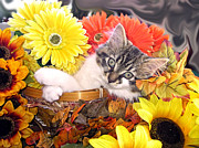 Kitteh Prints - Adorable Baby Cat - Cool Kitten Chilling in a Flower Basket - Thanksgiving Kitty with Paws Crossed Print by Chantal PhotoPix