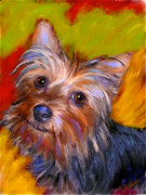 Terrier Digital Art Posters - Adorable Yorkie Poster by Karen Derrico