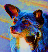 Cute Dogs Digital Art - Adoring Eyes by Smilin Eyes  Treasures