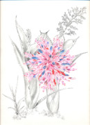 Epiphyte Painting Prints - Aechmea purpureorosea Print by Penrith Goff