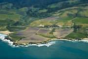 San Mateo County Prints - Aerial View of a Coastline Print by Eddy Joaquim
