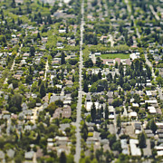 Palo Alto Prints - Aerial View of a Suburban Neighborhood Print by Eddy Joaquim